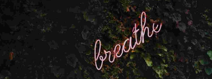 mindfulness of breath